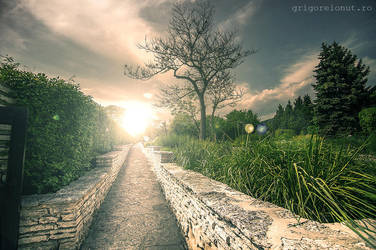 One way ... by MWPHOTO