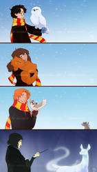 HP - True Companions by animon