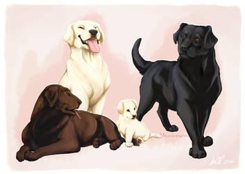 Dog Designs! ~Labradors by animon