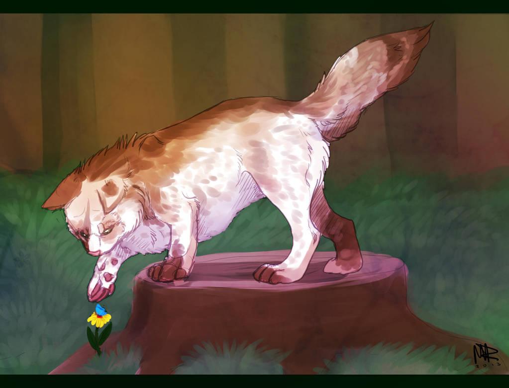 Request001: Hunter by marierockk