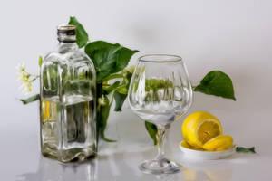 Still-life with a lemon, by Alexxxx1