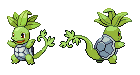 Seedtle Front and Back Sprites by NaoTheSillyDuffer