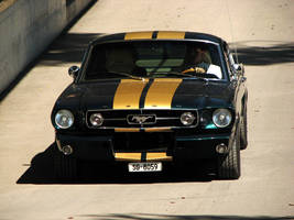 FAST.back by AmericanMuscle