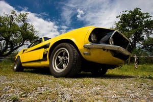 69 Ford Muscle by AmericanMuscle