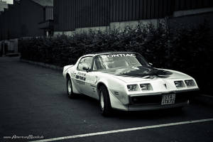 Trans Am Pace Car by AmericanMuscle