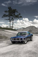 Blue Mustang Coupe IV by AmericanMuscle