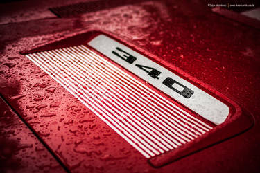 1971 Plymouth Road Runner Hood Treatment by AmericanMuscle