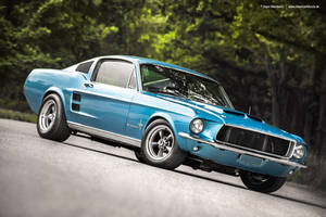 1967 Fastback - Shot 3 by AmericanMuscle