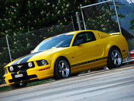 Mustang GT by AmericanMuscle