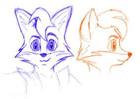 Beatfox 3: Head Sketch by Beatfox