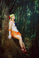 Venus Revisited by stillreflection