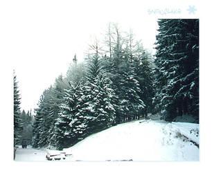 SnowFlake SomewhereInMountains by reticulum