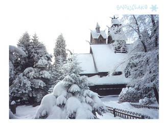 SnowFlake Wang Sanctary 2 by reticulum