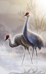 Bird study by Boochkin