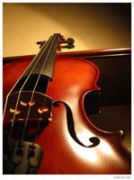 Violin by agui
