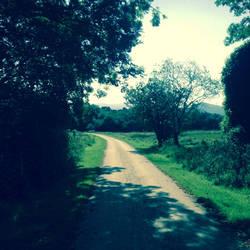 Winding road ahead by CoffeeJesus96