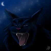 Roar  by ilka-eckert