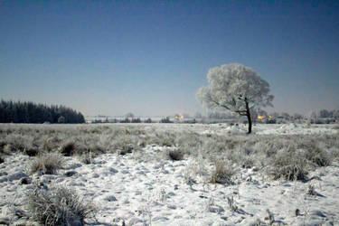 Snowscape by mcsnot