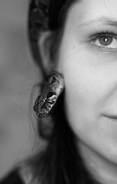korosareta's Profile Picture