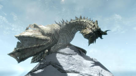 Paarthurnax by saltso