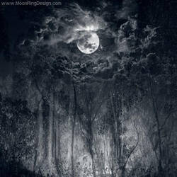 Moonforest-atmospheric-black-metal-cd-cover-artist by MOONRINGDESIGN