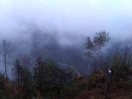 Foggy hiking trip by bormolino