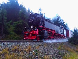 Brocken-Schmalspurbahn (Brocken-light railway) 2 by bormolino