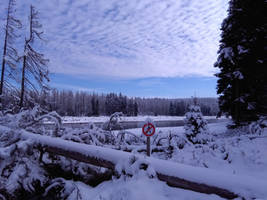 Winter Landscape by bormolino