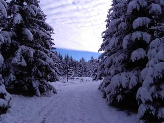 Winter Landscape near Torfhaus by bormolino