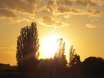 Shining sunset by bormolino