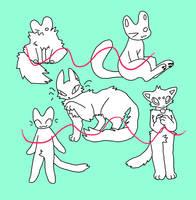 10pt cat basepack OPEN by boypaw