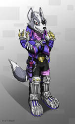 Wolf O Donnel by Foot-paws