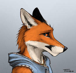 Lonely Fox by TitusWeiss