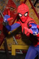 Cosplay- Spider-Girl 01 by rabid-potato
