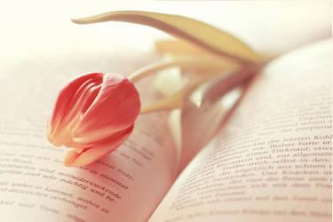 Foretaste of Spring by PassionAndTheCamera