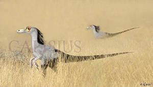 hunting raptors by Calisius