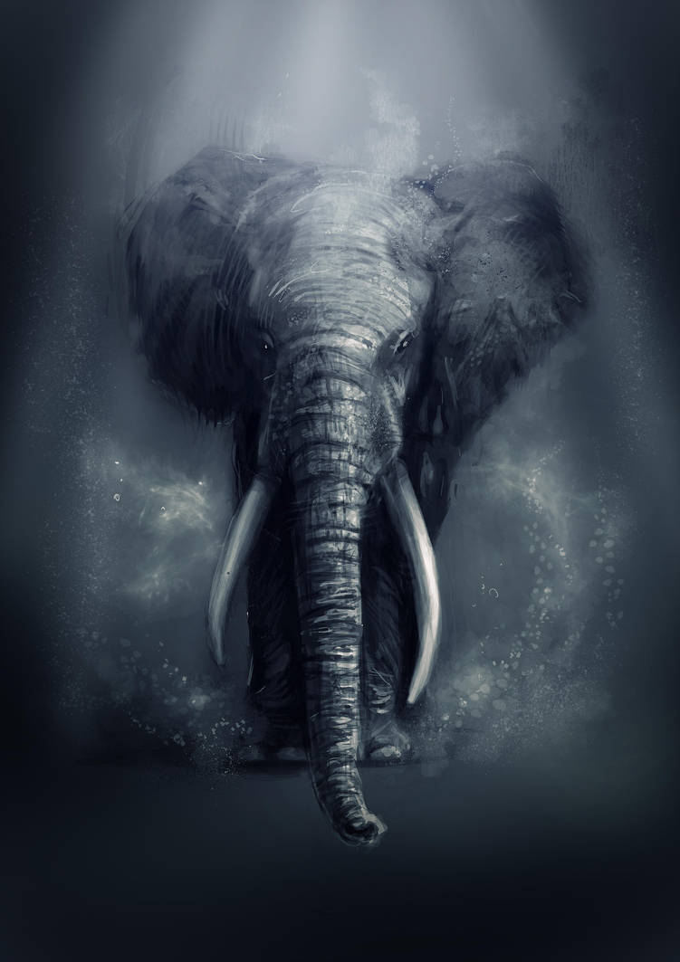 Elephant by Delun