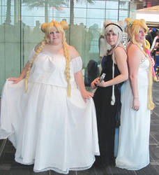 Princess Serenity Group by smithers456
