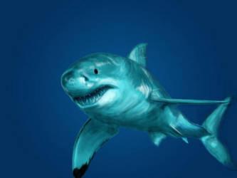 Great White Shark by gothfox