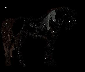 Stallions line by MUSONART