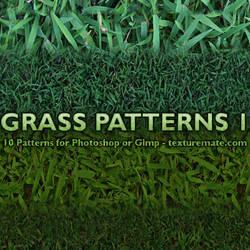 Grass Patterns 1 by AscendedArts