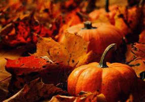 Little Pumpkins by AlienJeri