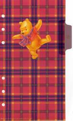 Winnie the Pooh Plastic 2 by AliceMeraviglia