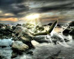 Sunset Dreamer by destil1