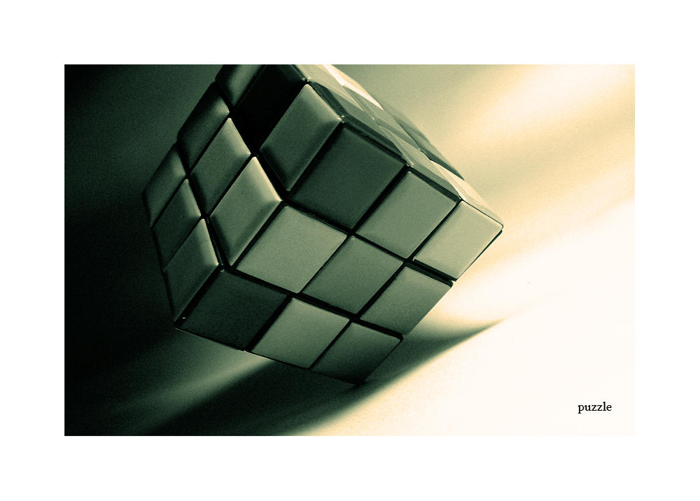 puzzle by pinkmaggot