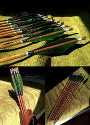 Arrows 1. by AlyaW