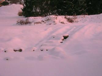 Sunrise Snow I by hotrats51