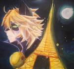 Cat noir by NightmaricArts623
