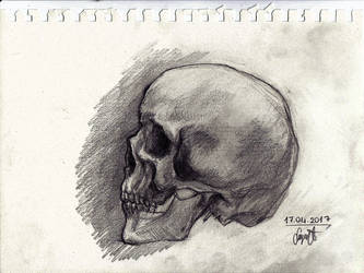 Skull Drawing by Suyesil