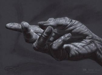 Hands-07-xswm by leoplaw